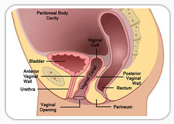 Is it ok to have an orgasim after a hysterectomy